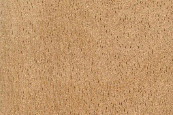 tipi-di-legno-faggio