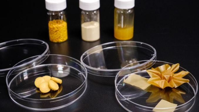 Il polline di girasole può essere trasformato in un mattone: la ricerca dell'Università di Singapore