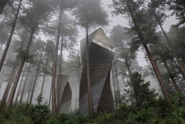 casa sull'albero di anthony gibbon